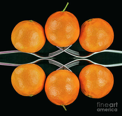 Photograph - Orange Balance by Shirley Mangini