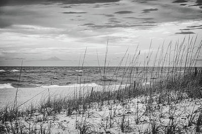 Photograph - Orange Beach Dunes Grass by John McGraw