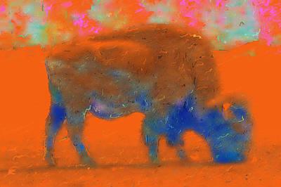 Orange Bison Art Print