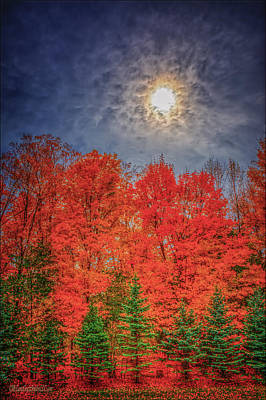 Photograph - Orange Blue Green Fall by LeeAnn McLaneGoetz McLaneGoetzStudioLLCcom