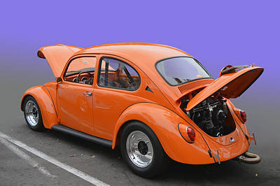Photograph - Orange Bug by Bill Dutting