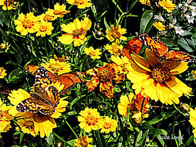 Photograph - Orange Butterflies On Yellow Coreopsis by Susan Savad