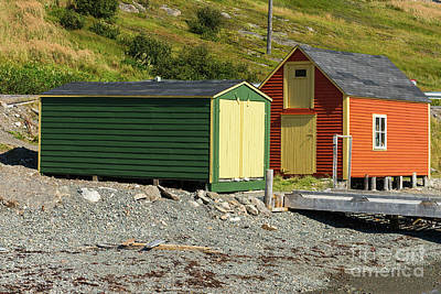 Photograph - Orange Cabin And Green Shed by Les Palenik