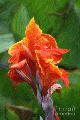 Orange Canna Art Art Print by John W Smith III