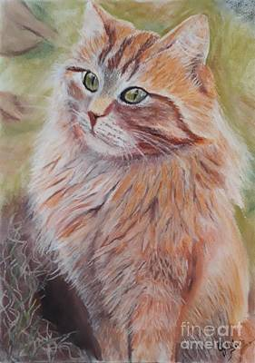 Wall Art - Painting - Orange Meow by Cybele Chaves