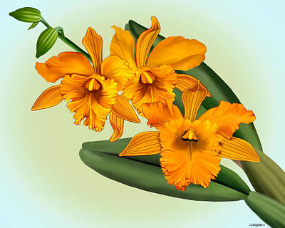Mixed Media - Orange Cattleya Orchids by Anthony Seeker