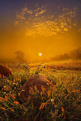 Photograph - Orange Crush by Phil Koch