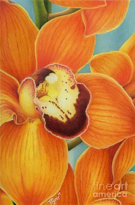 Painting - Orange Cymbidium Orchids by Tanya Tyrer