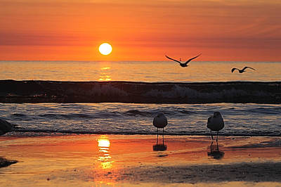 Photograph - Orange Dawn Day by Robert Banach