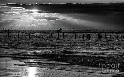 Photograph - Orange Dawn Outer Banks Bw by Dan Carmichael