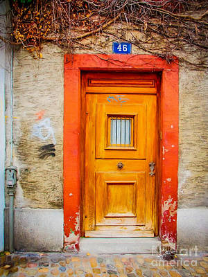 Photograph - Orange Door And Vine by TK Goforth