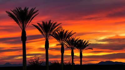 Photograph - Orange Dream Palm Sunset  by Saija Lehtonen