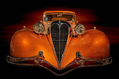 Photograph - Orange Dream by Susan Rissi Tregoning
