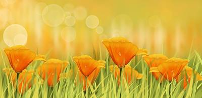 Orange Poppy Painting - Orange Field by Veronica Minozzi