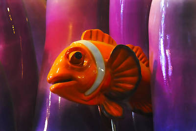 Photograph - Orange Fish by Carlos Diaz