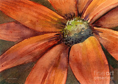 Royalty-Free and Rights-Managed Images - Orange Flower by Amy Kirkpatrick