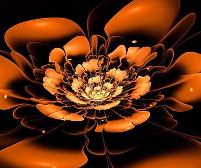 Blooming Digital Art - Orange Flower  by Anastasiya Malakhova