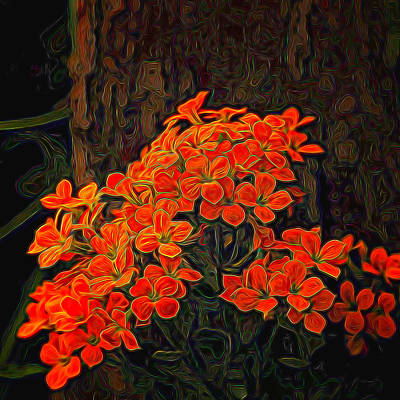 Photograph - Orange Flowers Painted by Judy Vincent