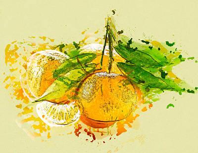 Tangerines Mixed Media - Orange Fruit by Stockr