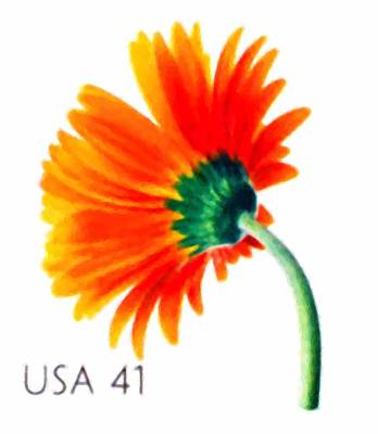 Botanical Painting - Orange Gerbera Daisy by Lanjee Chee