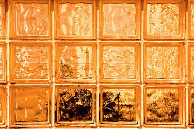 Photograph - Orange Glass by David Hare