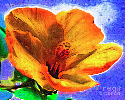 Digital Art - Orange Hibiscus by Kirt Tisdale