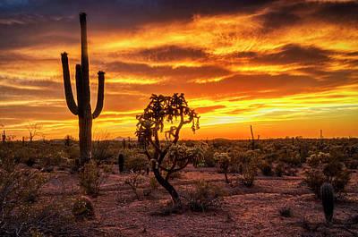 Photograph - Orange Hued Sunset Skies  by Saija Lehtonen