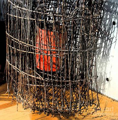 Orange In Wire Art Print by Gary Everson