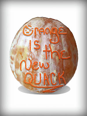 Mixed Media - Orange Is The New Quack by Susan Maxwell Schmidt