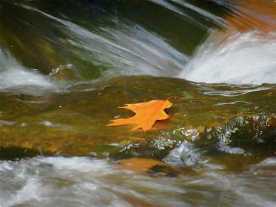 Digital Art - Orange Leaf On Flowing Water. by Rusty R Smith