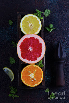 Photograph - Orange, Lemon And Grapefruit by Anastasy Yarmolovich