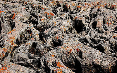 Photograph - Orange Lichen On Rocky Ridges by Debbie Oppermann