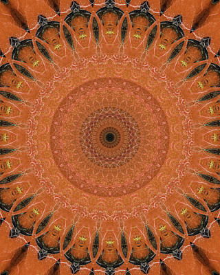Digital Art - Orange Mandala by Jaroslaw Blaminsky