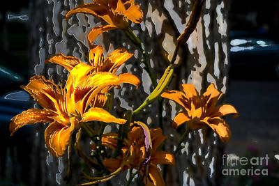 Digital Art - Orange Metal Lily by Deborah Nakano