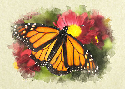 Photograph - Orange Monarch Butterfly Blank Note Card by Christina Rollo
