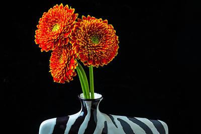 Gerbera Photograph - Orange Mums In Vase by Garry Gay