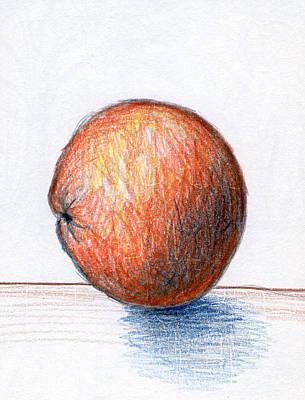 Fruit Colored Pencil Drawing Drawing - Orange by Nancy Mueller