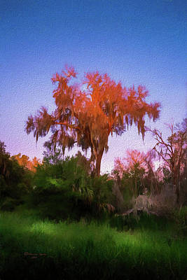 Park Scene Photograph - Orange Oak by Marvin Spates
