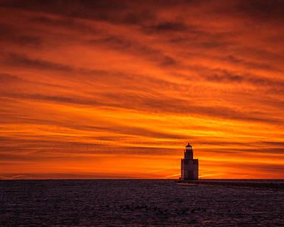 Photograph - Orange Plush by Bill Pevlor