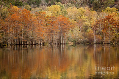 Art Print featuring the photograph Orange Pool by Iris Greenwell
