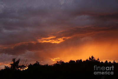 Photograph - Orange Rays by Kathy DesJardins