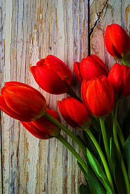 Chip Photograph - Orange Red Tulips by Garry Gay