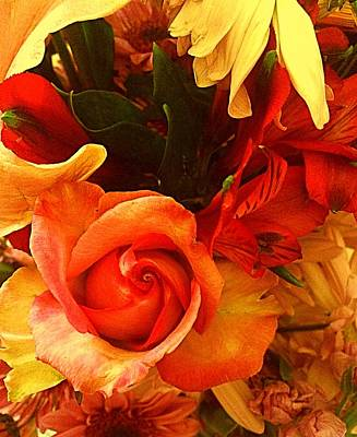 Photograph - Orange Rose Flowers Everyday  by Ellen Levinson