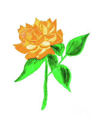 Painting - Orange Rose, Painting by Irina Afonskaya