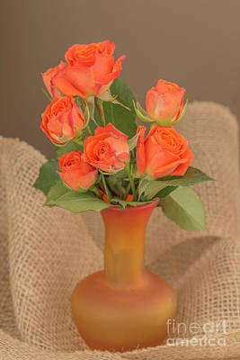 Photograph - Orange Roses In A Vase by Alana Ranney
