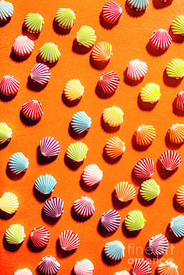 Beach Royalty-Free and Rights-Managed Images - Orange seashell scatter by Jorgo Photography - Wall Art Gallery