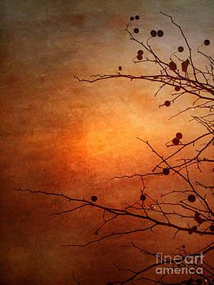 Orange Simplicity Art Print by Tara Turner
