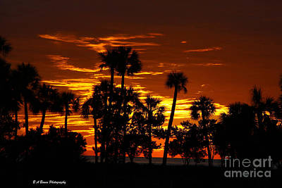 Photograph - Orange Skies by Barbara Bowen