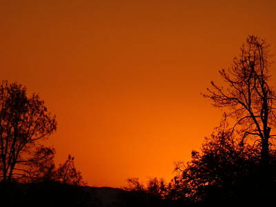 Photograph - Orange Sky by Jim Taylor