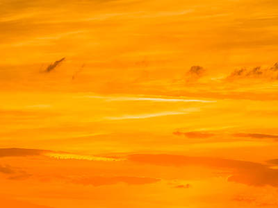 Photograph - Orange Sky by Robin Zygelman